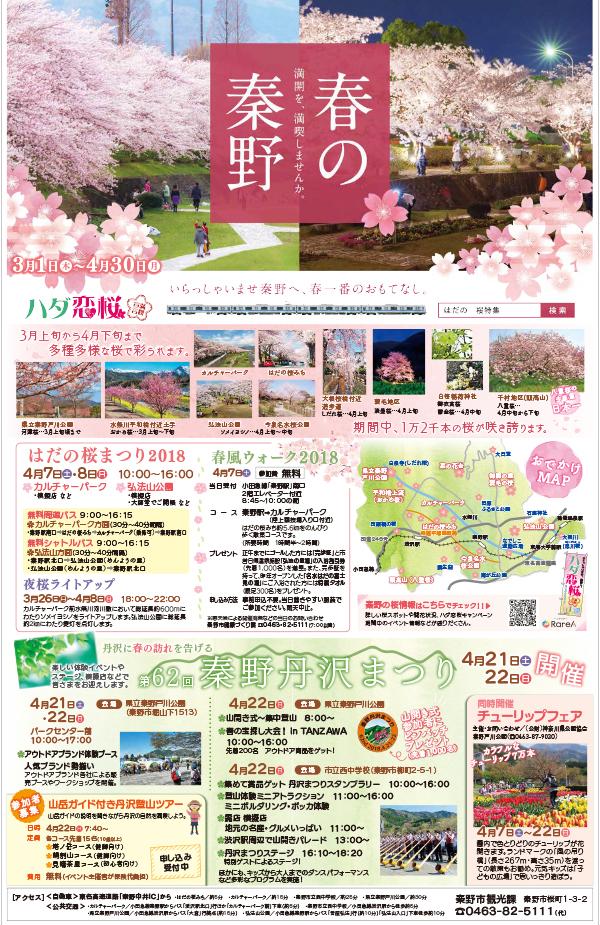 春の特別号8面