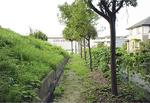 約10年前の荏子田太陽公園