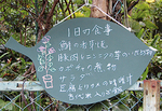 「AOBA  Shokudo」(作/池田光宏さん)