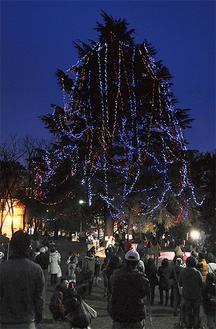 点灯された美しが丘公園のクリスマスツリー