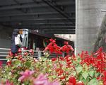 国道246号高架下に花壇を整備