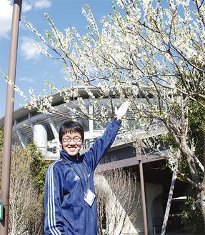 公園内の植物を紹介する横松さん