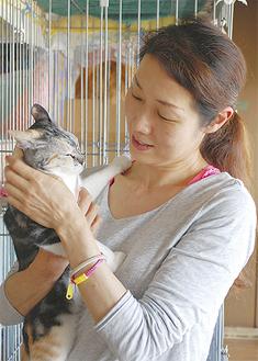 シェルターの猫と大網さん(48)