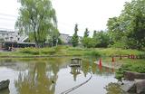 蚊の採取が始まった桜台公園