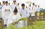懸税を収穫する篠戸宮司