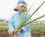 グリーンでの収穫体験