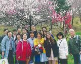 桜を楽しんだ参加者=同会提供