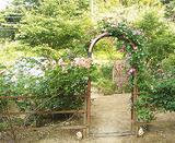 ローズオカガミのゲート(写真は春)