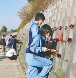 護岸に花を植える学生達