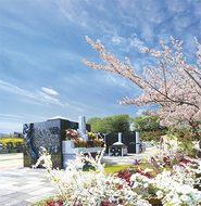 桜咲き誇る永代供養墓・樹木葬で眠る