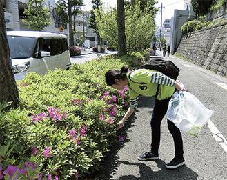 ゴミを拾う学生=青葉区役所提供