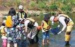 川の生き物を調べる参加者