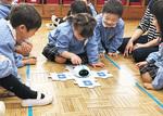 知育ロボット「アリロ」でプログラミング教育