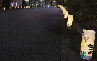 通りの両側に飾られた灯籠