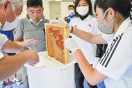 ハチミツ採取に挑戦