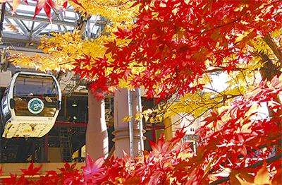 箱根で親子ツアー