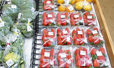 中里ハマッ子で新春地場野菜セール