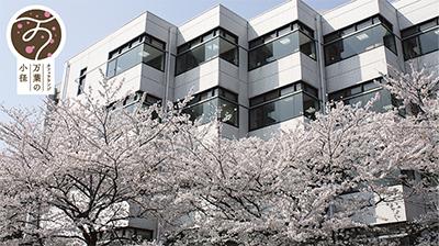 たまプラ随一の桜スポット
