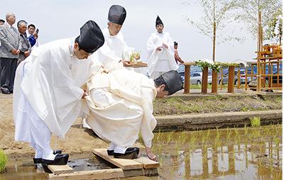 「お田植祭」で豊作祈る