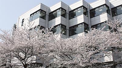桜目線のお花見キャンパス