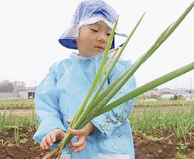 各地で「収穫祭」