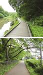 県立四季の森公園(写真上)とふるさと尾根道緑道(下)