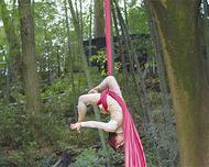 森の中でサーカス公演