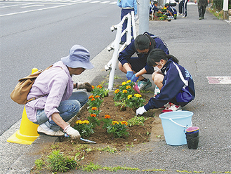 花を植える中山中生徒