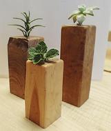 伐採樹木から木工品