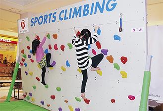 スポーツクライミングに挑戦する子ども達