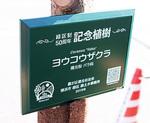 記念樹に掛けられたプレート