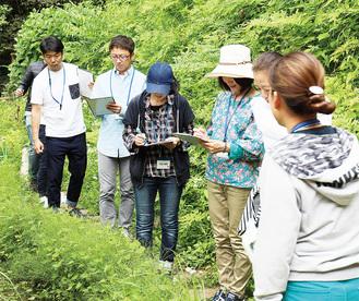 自然を観察する参加者