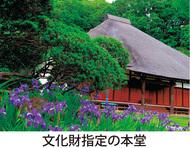 「花のお寺」でホッと一息