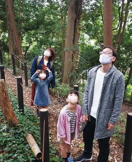森の中を散策する家族