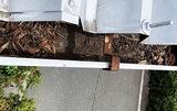 落ち葉が詰まった雨樋