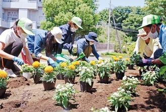 指導を受けながらマリゴールドなどの花苗を植える生徒ら