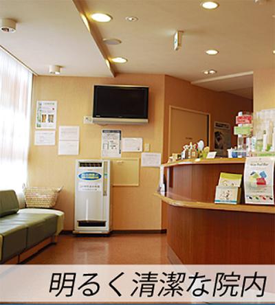 下肢静脈瘤の要因と治療法
