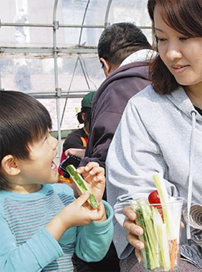 「自分で育てた野菜は絶品」