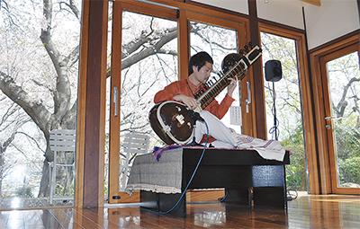 庭園の桜、音楽と愛でる