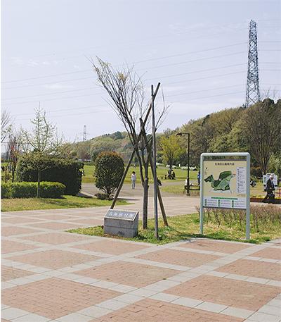 玄海田公園を新たに指定