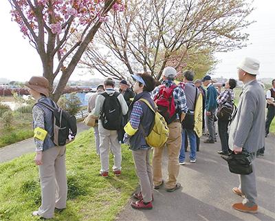 春の鴨居・東本郷を散策