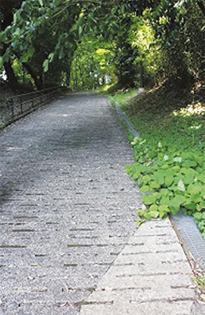 古道の面影を残す念珠坂(三保町)