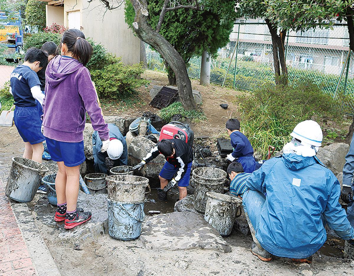 池の環境を整備