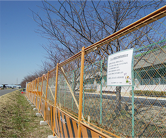 左手が鶴見川側。右手の水再生センター側には桜並木が広がる。