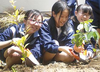 笑顔で苗を植える生徒