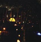幻想的な竹とうろうが灯る