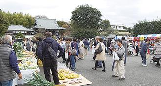▶初開催の寺フェスは多くの人で賑わった