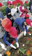 大倉山を花のまちに