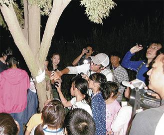 昆虫採集の様子(新横浜公園提供)
