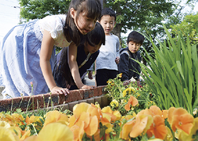 新吉田第一公園「楽しみな花壇」